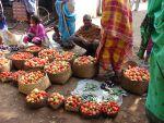 सब्जी-दूध की सप्लाई नहीं करेंगे मध्यप्रदेश के किसान, सरकार कर रही है मनाने की कोशिश