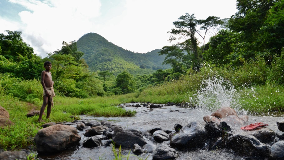 One of the over 100 perennial streams that originate from the Niyamgiri hill range (Photo: Sayantan Bera)