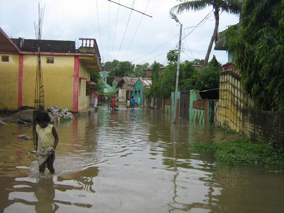 Flooding in the area makes Collector's house unreachablePhotographs by: Irfana Qureshi from coastal Odisha and Trinath Prasad Acharya from western OdishaRead also: Why floods despite dams