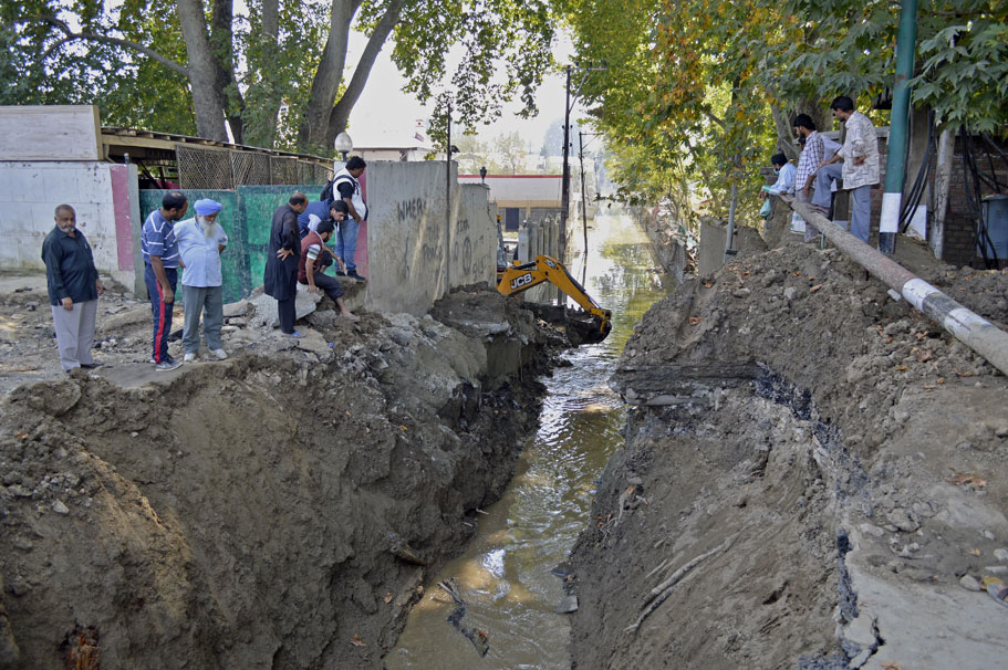 A large number of trees were uprooted during the floods