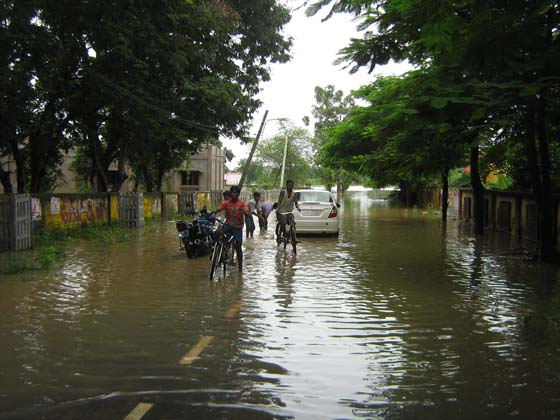 Flooded houses in OdishaPhotographs by: Irfana Qureshi from coastal Odisha and Trinath Prasad Acharya from western OdishaRead also: Why floods despite dams