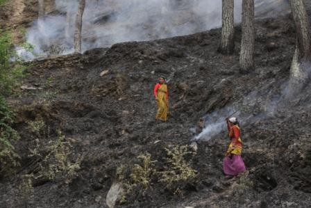An activist rued the Chhattisgarh government's apathy towards the implementation of community forest rights in the state as one of the main reasons why forest fires have increased Credit: Vikas Choudhary
