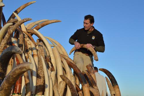 India adopts SAWEN statute against wildlife crimes