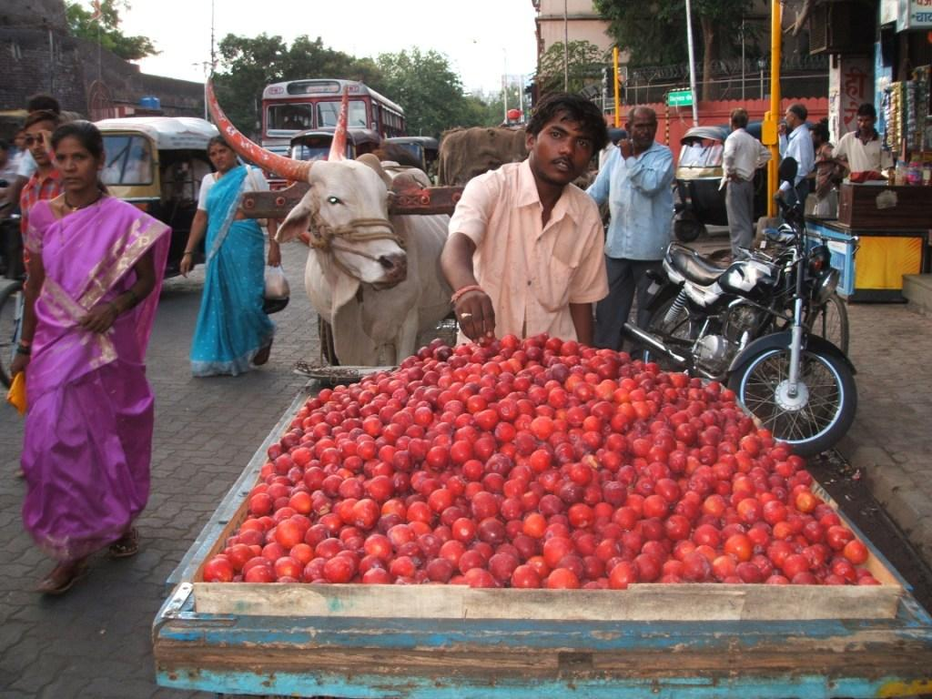 Fresh plums at a Pune market  Credit: Flickr