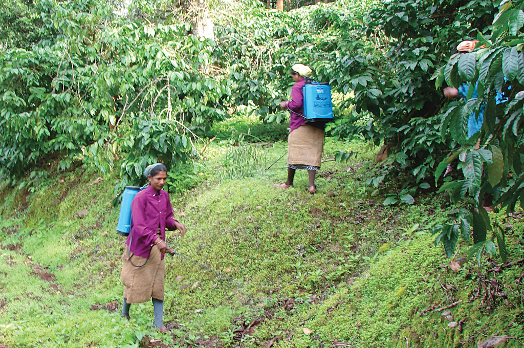 Farmers of