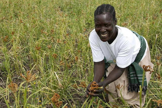 Even though agriculture can contribute to local employment, it is better able to do so when there is a diverse, rural non-agricultural economy