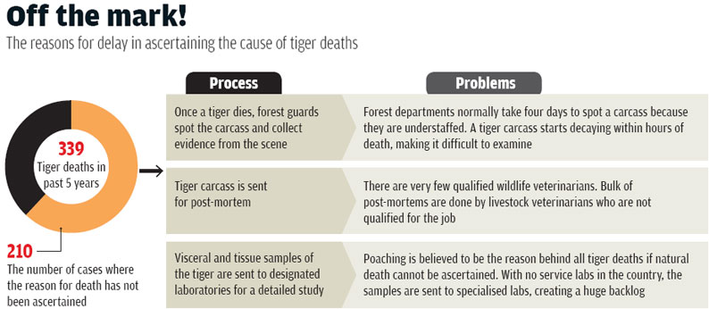 Source: National Tiger