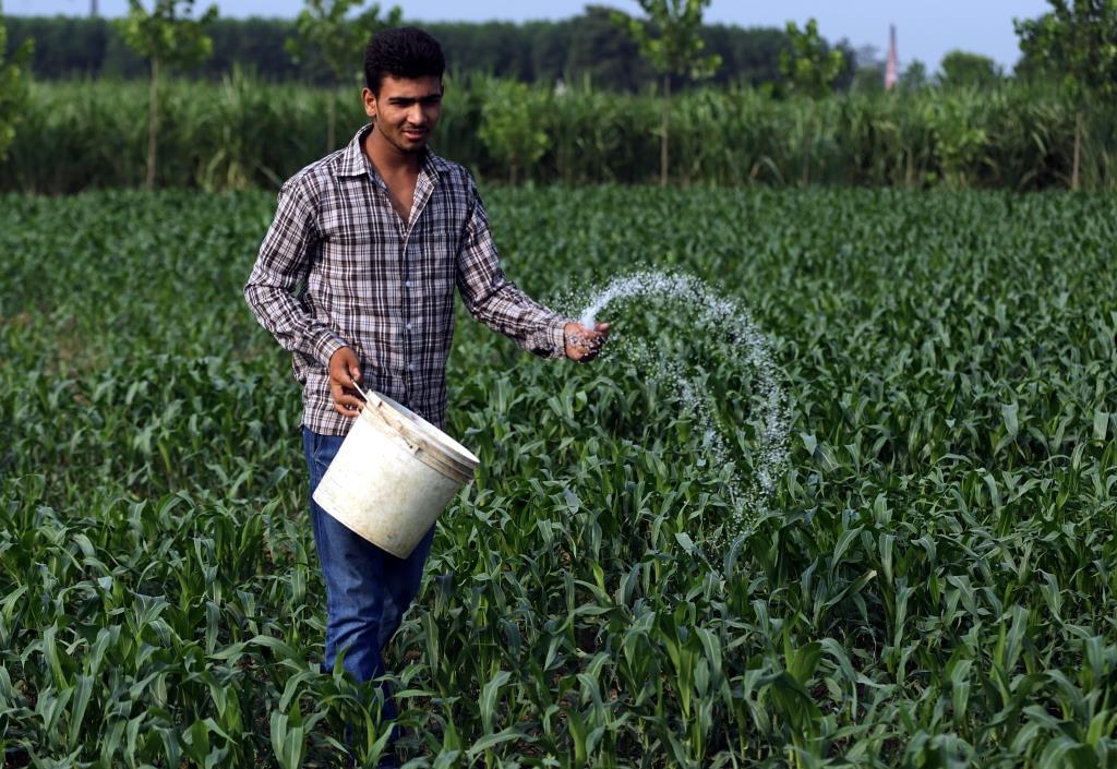 Some initiatives bridge the gap between farmers and experts by ensuring last mile delivery of new technologies (Photo: Vikas Choudhary)
