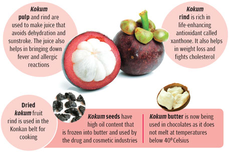 The fat extracted from the seed has high medicinal value.  The rind is also used in an anti-obesity drug in the USA and Japan