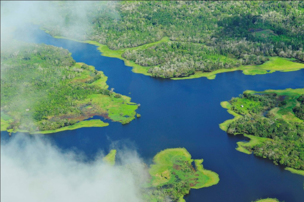 Aerial view of the Amazon rain forest near the city of Manaus in Brazil    Credit: Flickr