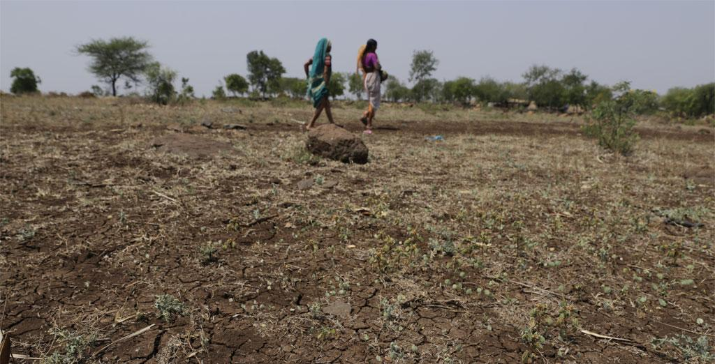 The India Meteorological Department has forecast the early retreat of monsoon, which has dashed the hopes of farmers expecting late showers Credit: Vikas Choudhary