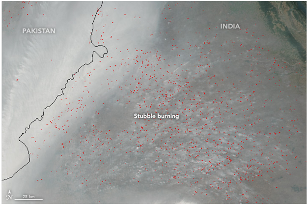 The image taken over both Punjab and Haryana on November 6 shows paddy burning incidents. Each red dot indicates large-scale crop residue burning over an area of 1 sq km