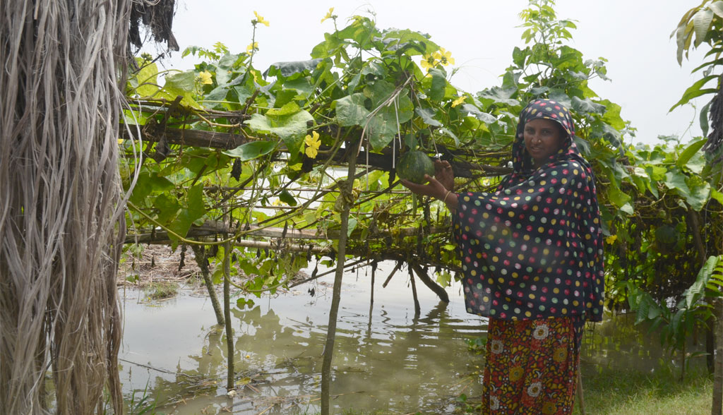 Locals use bamboo structures to support crops to avoid flood damage. (Kundan Pandey/CSE)