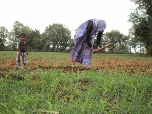 Farmers demand law for guaranteed income