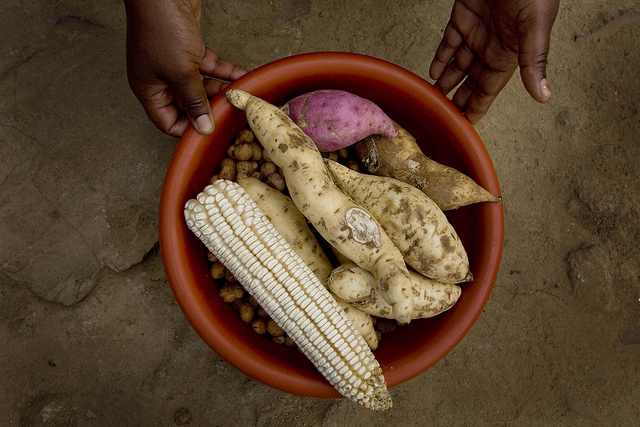 Why Nairobi must spread the right food message in an unhealthy environment