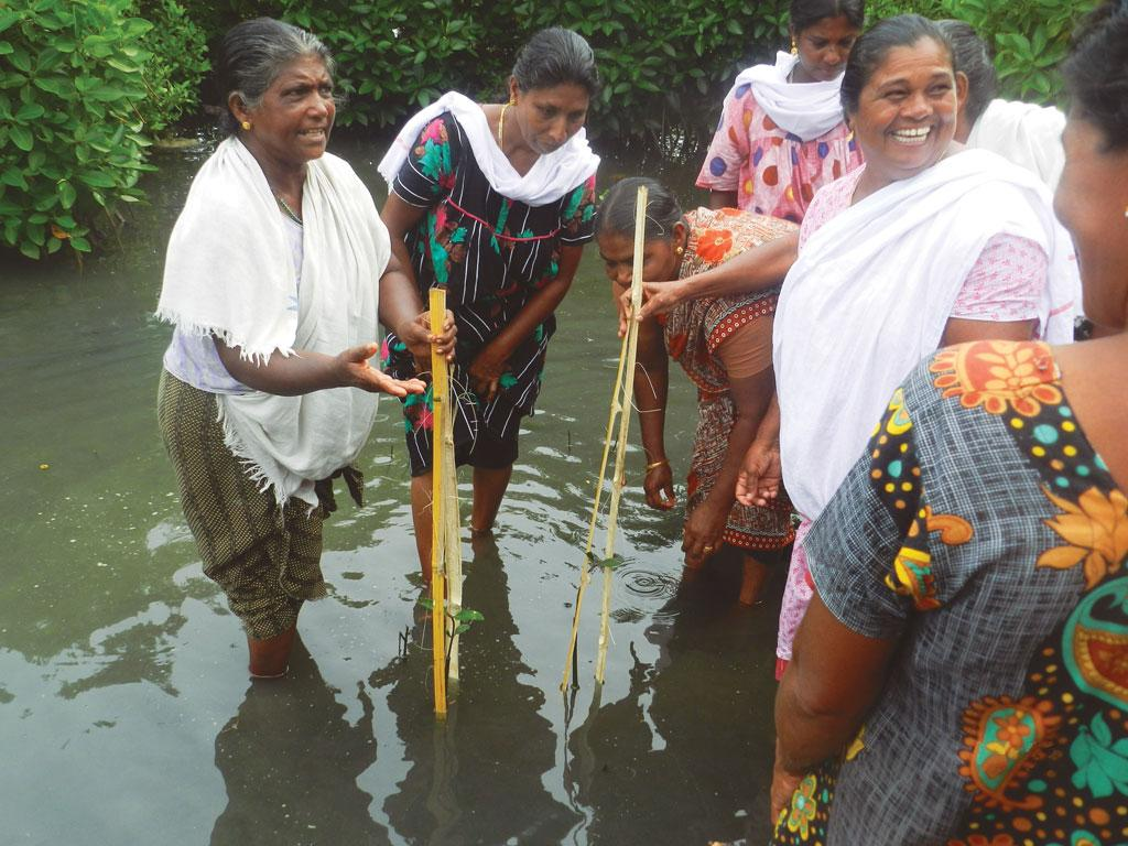 Kerala's protected, yet polluted lake