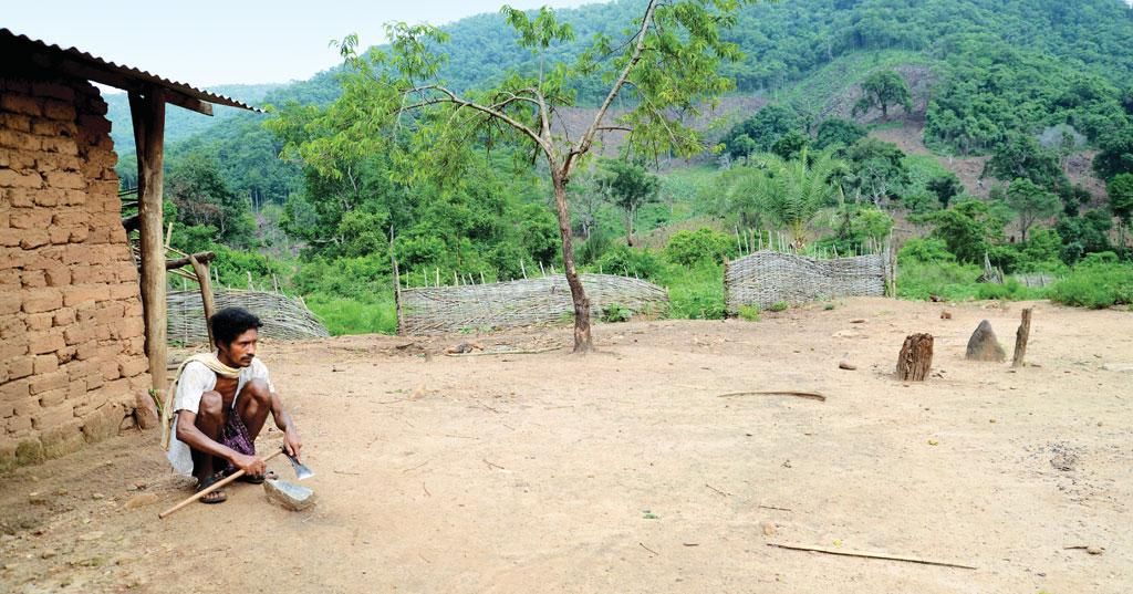 In the mineral-rich Niyamgiri, which is considered sacred by the Paraja tribe, not even one sacred grove was identified by the state government (Photo: Sayantan Bera)