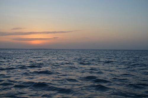 Rising ocean temperatures will lead to sharp decline in marine productivity, says  study