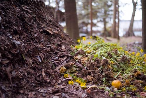 Government approves proposal to scale production and sale of compost