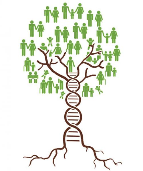 DNA as history and sophistry