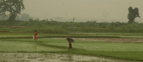 Monsoon enters deficit phase