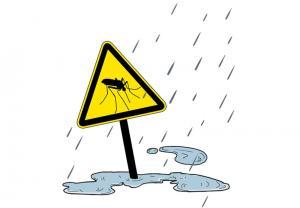 Dengue, another climate alert