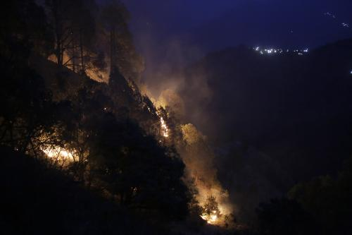 Forest fire in Uttarakhand has claimed more than 3,739 hectares of forest land this year