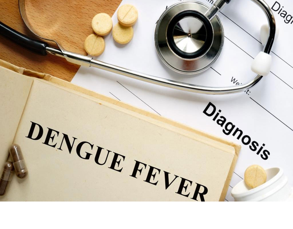 Dengue spreads its wings