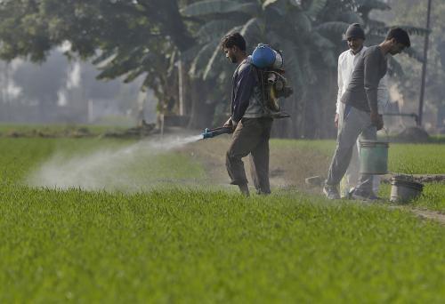 Survey proposes direct benefit transfer in fertiliser subsidy