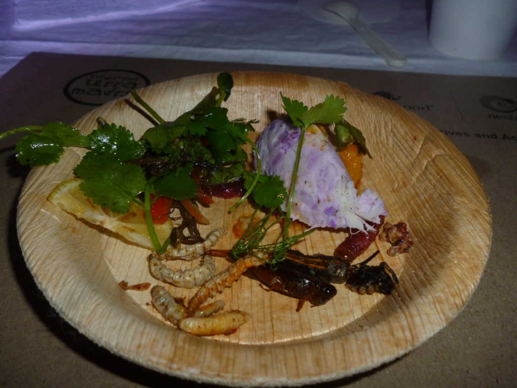 Carpenter worm, honey bee and edible spider with side salad