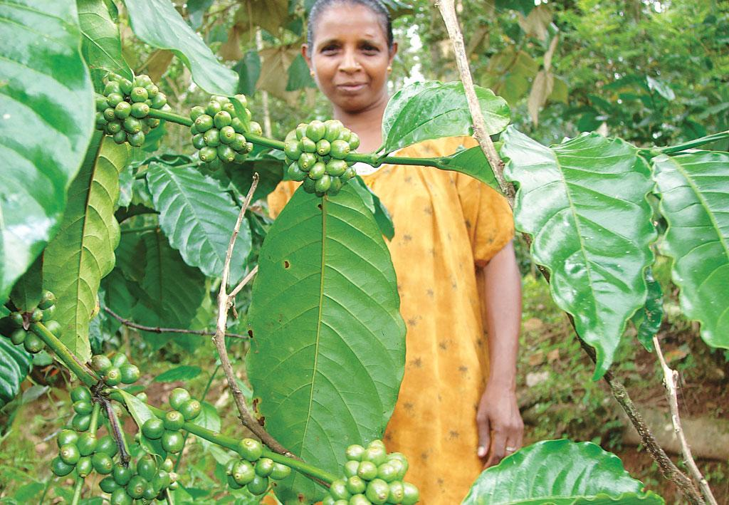 Geetha J R of Karnataka's