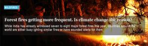 Forest fires getting more frequent. Is climate change the reason?