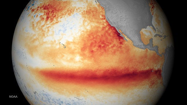 Overall rise in gobal temperatures have contributed to a stronger El Niño