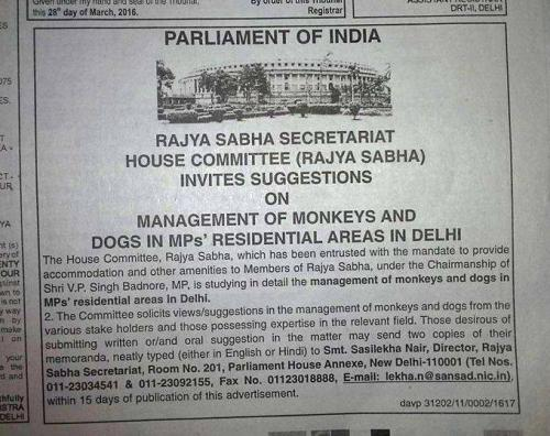 The monkey's paw of Lutyens' Delhi