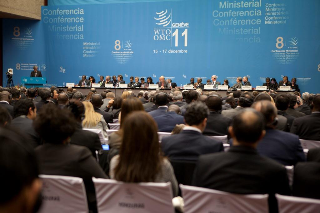 'Indian and African leaders must not fail to protect interests of locals at upcoming WTO meet'