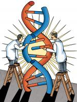 DNA at play