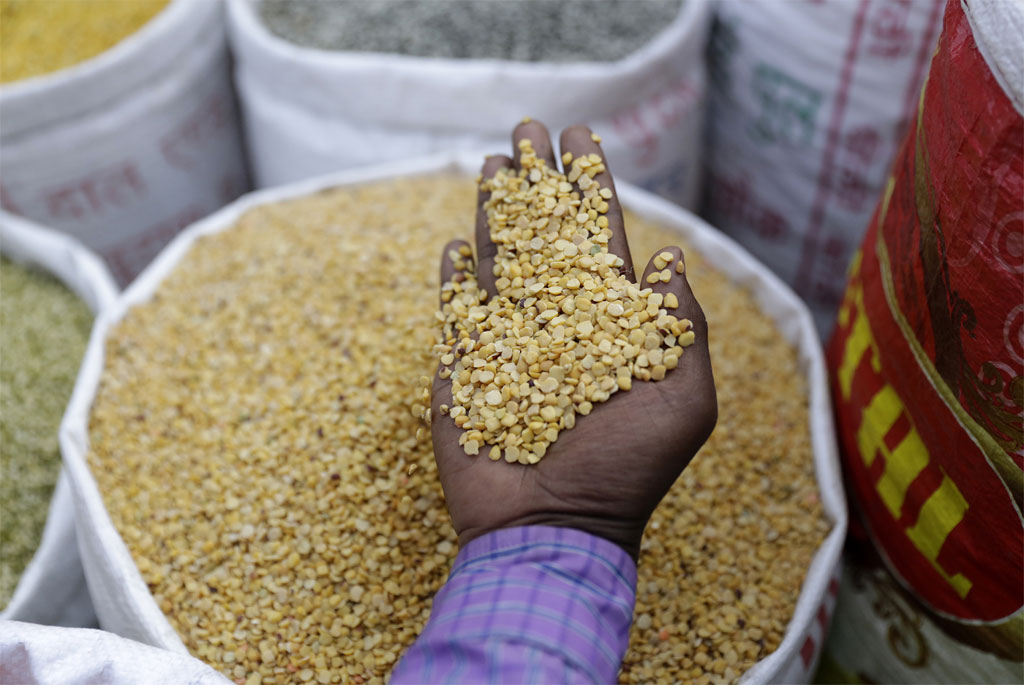IPR claims by big companies; farmers' food security under threat