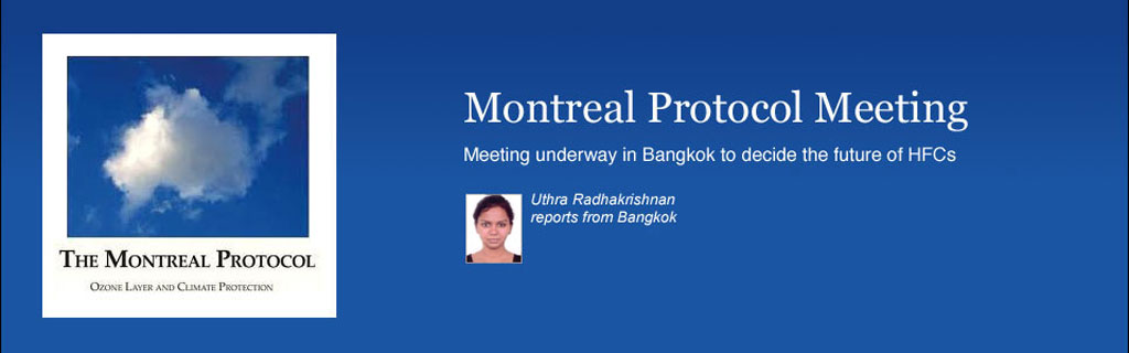 Montreal Protocol Meeting (MOP 25)
