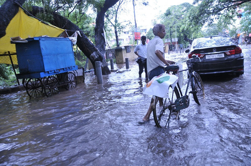 It was only on Wednesday, two weeks since disaster had struck, that Chennai was declared a disaster zone (Photo: Shreeshan Venkatesh)