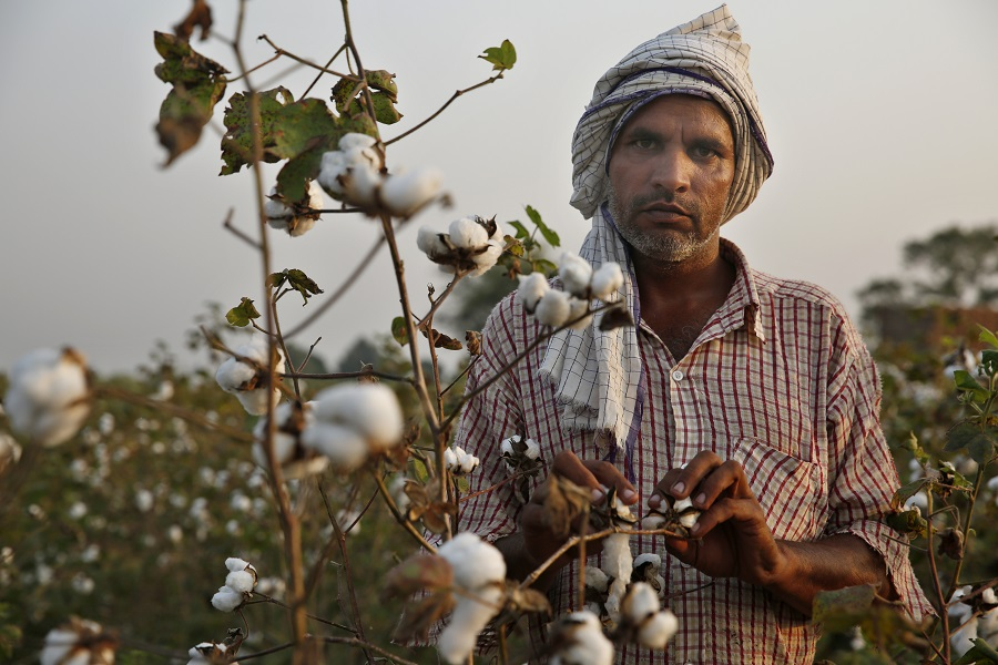 The average monthly income of an Indian farmer is less than Rs 6,426 (Photo: Vikas Choudhary)