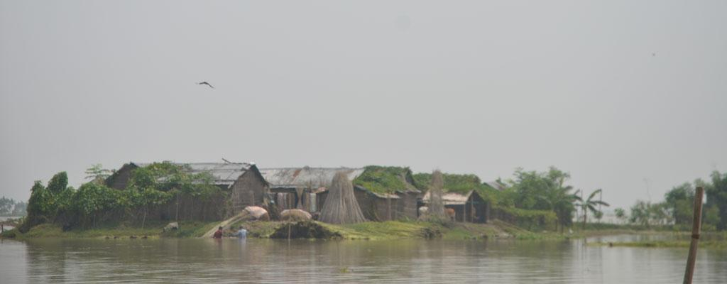 River islands or chars in Bangladesh are prone to frequent flooding