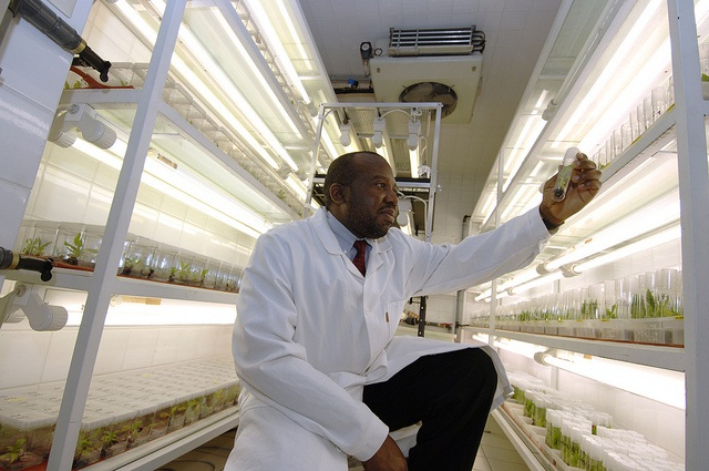 We are now challenged to attain higher yields with fewer external inputs, says Chikelu Mba Credit:IAEA Imagebank