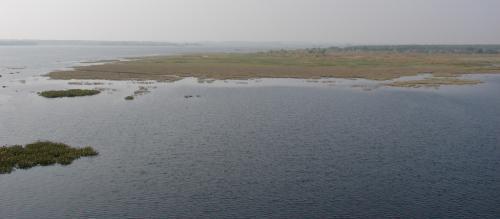 NGT slams West Bengal's Bakreshwar thermal plant for fly ash pollution
