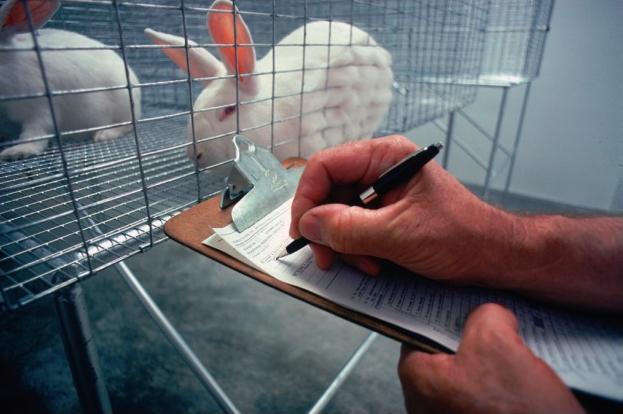Animal testing need not be repeated for registration of drugs in India