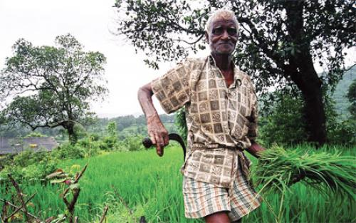 Centre rolls out Agriculture Land Leasing Act, 2016